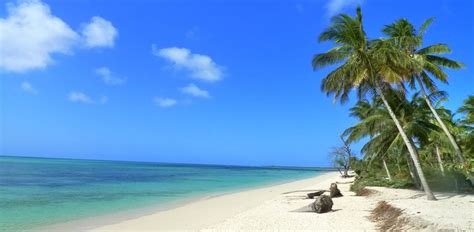 best beaches in the world best beaches in the world mafia island tanzania news