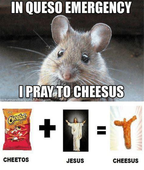 Rats Ass Meme - search cheeto jesus memes on me me