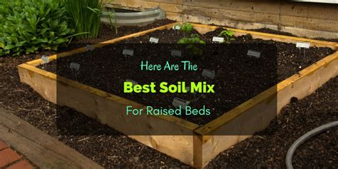 raised garden beds soil here are the best soil mix for raised beds