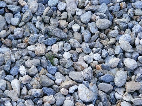 rocks in sedimentary rocks facts for cool kid facts