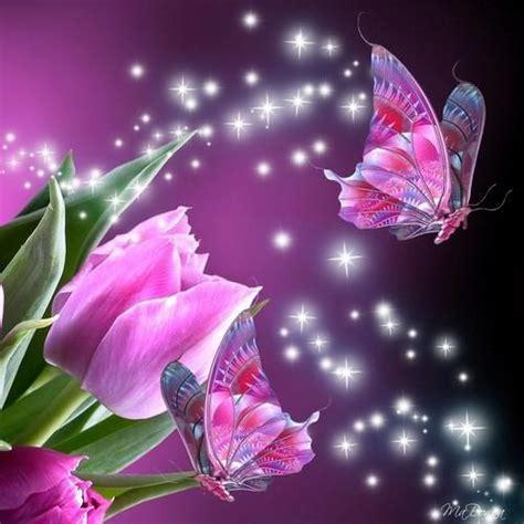 imagenes mariposas y libelulas movimiento imagenes lindas animadas de libelulas buscar con google