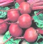 Beetroot Juice Side Effects Stools by Beet Juice A Great Cleanser Of The