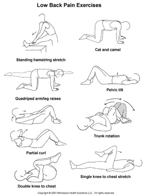 lower back stretches in bed low back pain exercises workout motivation pinterest