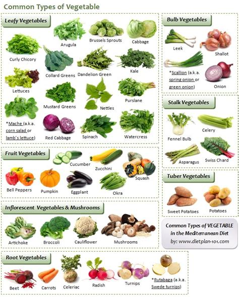 vegetables with 0 carbohydrates 25 best ideas about vegetables list on list