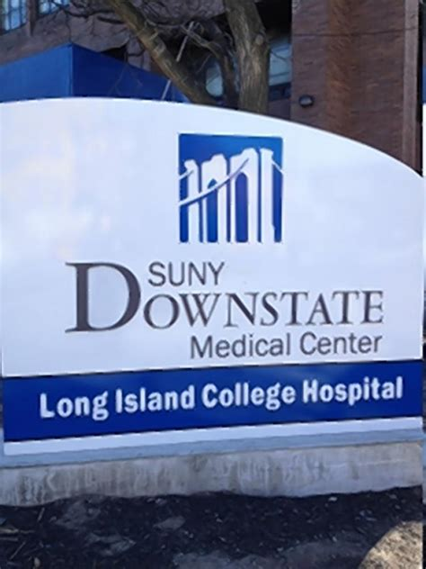 suny downstate emergency room assemblywoman to be collared for protesting lich closure ny daily news