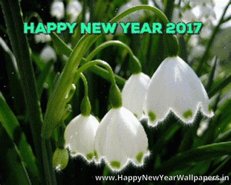 flower happy new year gif happy new year 2017 flower blossom gif wishes images