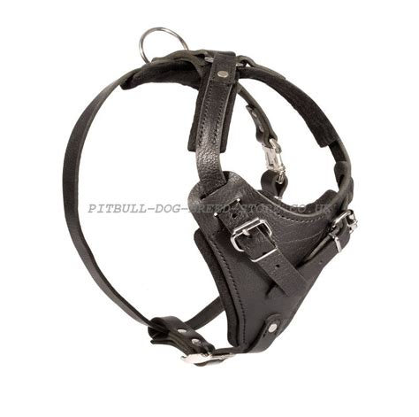 large harness large harness presa canario harness 163 50 22