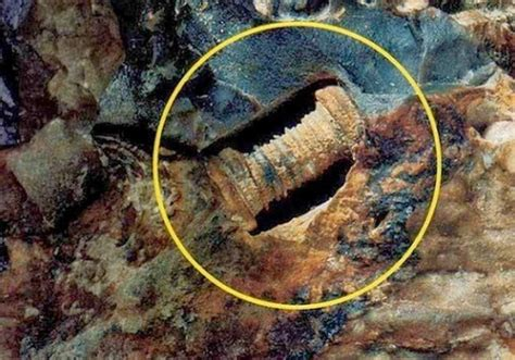 Door Knobs Found In Coal Is This A 300 Million Year Or Just A Fossilized