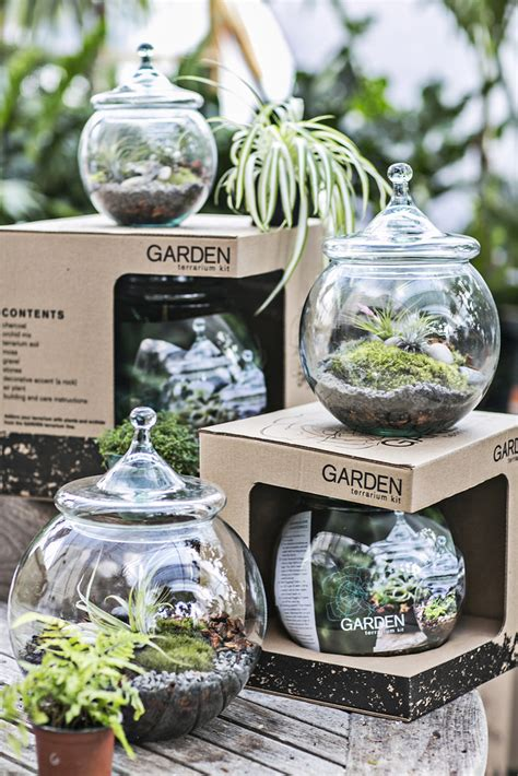 Gardener S Supply Company Terrarium Kit A Terrarium Kit To Get Us Through The Fall Design