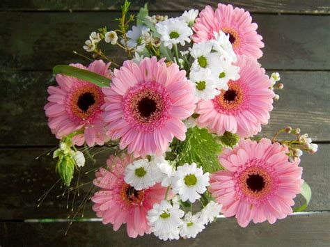 imagenes de flores naturales gratis ideas de centros de flores naturales