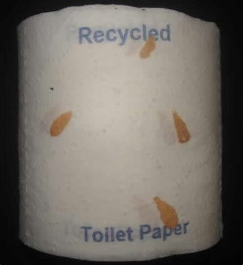 How To Make Toilet Paper From Recycled Paper - used toilet paper recycled toilet paper