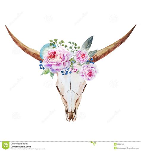 bull skull watercolor stock vector illustration of emblem