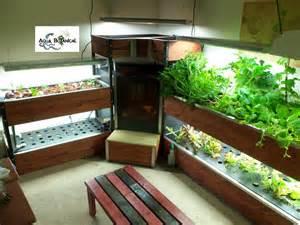 Indoor Hydroponic Herb Garden - missouri aquaponics aqua botanical
