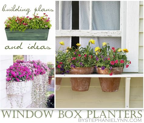 Indoor Plants For Cats by Ten Diy Window Box Planter Ideas With Free Building Plans