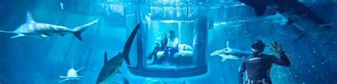 shark bedrooms airbnb is offering a night in an underwater bedroom