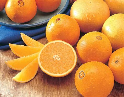 Obat Cina Sehat Mata 115 manfaat dan khasiat jeruk navel untuk kesehatan khasiat