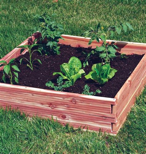 raised garden beds kits raised bed garden kits dovetail cedar raised garden bed
