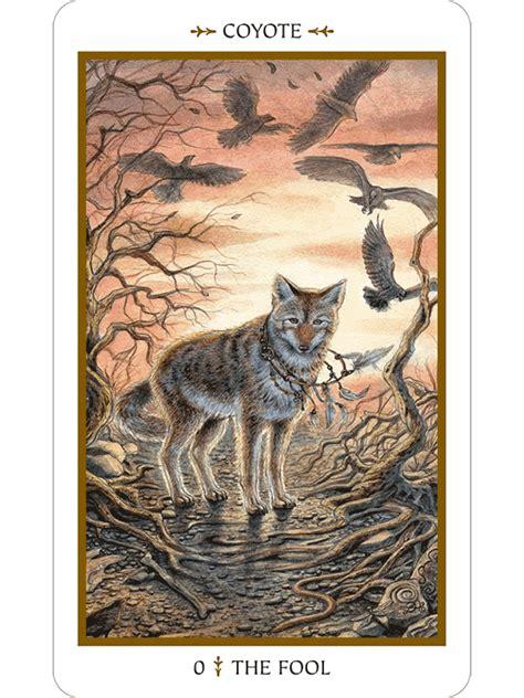 libro animal tarot cards a animals divine tarot the fools dog
