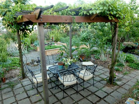 kiwi trellis design pergola shaded by kiwi vines arbor