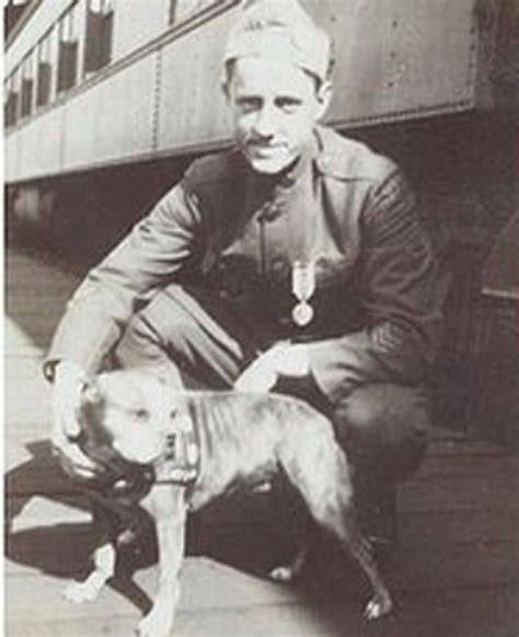 Sgt Stubby Badass Of The Week 35 Best Sergeant Stubby Images On