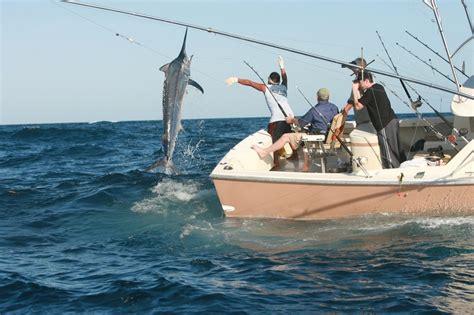 big boat runs over fishing boat celticquest fishing long island the best fishing spots