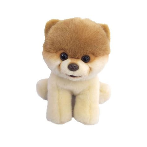 pomeranian stuff the world s cutest boo stuffed animal plush pomeranian buy plush pomeranian