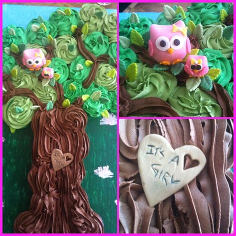 How To Make Owl Cupcakes For Baby Shower by Owl Baby Shower Cupcake Tree Decorative Themed Cake
