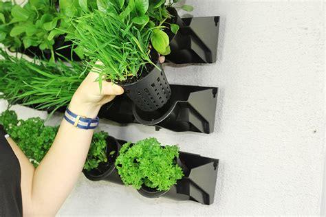 Holman Vertical Garden How To Create A Greenwall Vertical Garden Holman