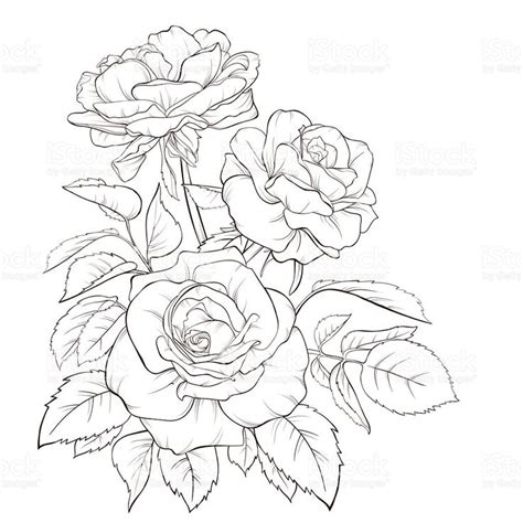 rose bunch tattoo bunch of roses drawing at getdrawings free for
