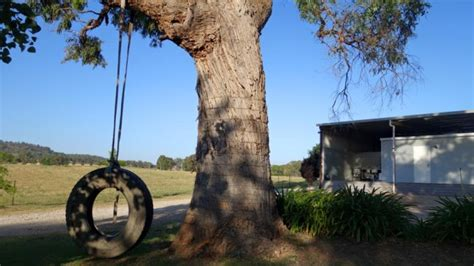 accomm review gumtree cottage  peppertree hill mudgee