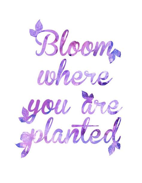 color purple quotes best 25 purple quotes ideas on be you just