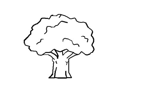 line drawing software free tree line drawing clipart best