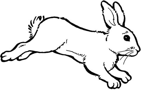 hopping bunny coloring page bunny coloring pages clipart best