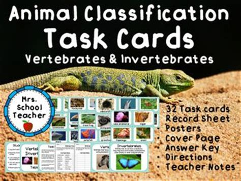 6 best images of zoo animal sorting card printables zoo 17 best images about classifying living things on