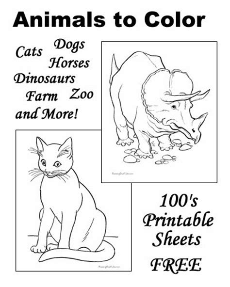animal animals coloring book activity book for includes jokes word search puzzles great gift idea for adults coloring books volume 1 books 84 coloring pages of different animals animals