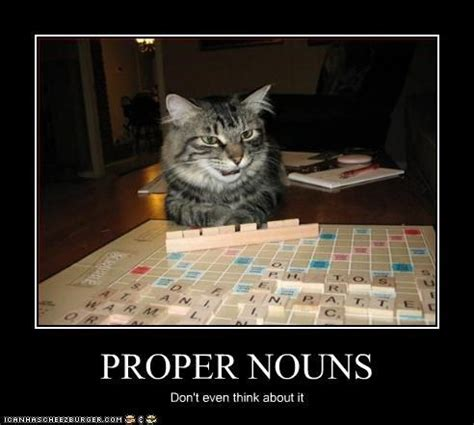 scrabble proper nouns image gallery scrabble cat