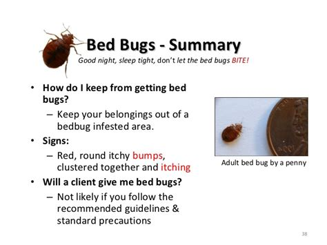 Bed Bugs Vs Scabies by Bedbugslicescabiesohmy