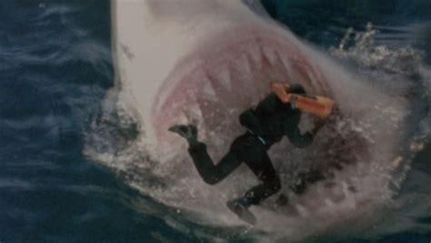 imagenes reales megalodon atak rekin 243 w megalodon galeria zdjęcie nr 7 stopklatka