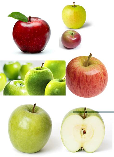 Buah Apel agroteknologi manfaat buah apel yang jarang diketahui