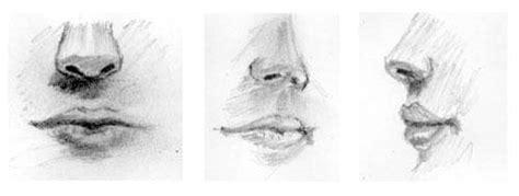 imagenes de narises a lapiz c 243 mo dibujar bocas realistas la paleta del artista