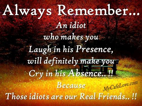 Quotes About And Friendship Idiot Friends Quotes And Pictures Quotesgram