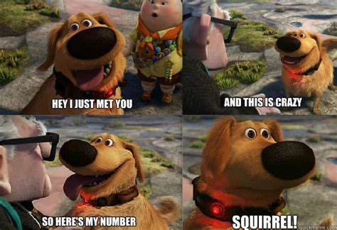 up squirrel dug from up squirrel memes