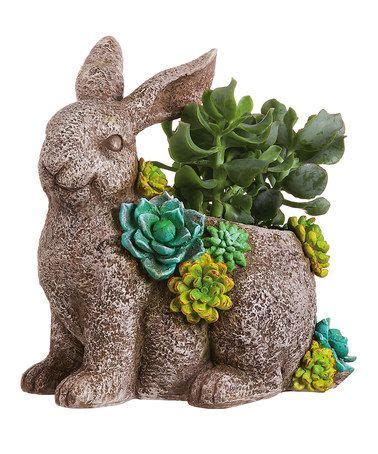 succulent garden turtle planter contemporary plants by zulily 7 best images about zully com on pinterest home duvet