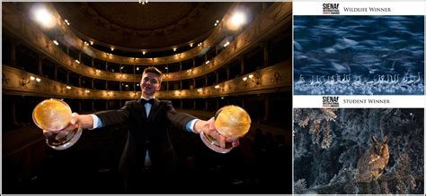 siena international photo awards mateusz piesiak podw 243 jny laureat siena international photography awards www wroclaw pl