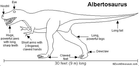 albertosaurus enchanted learning software
