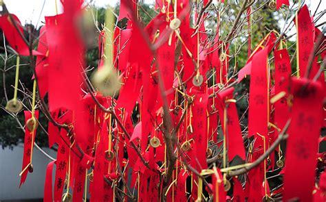 wishing tree for new year new year 2016 images parade celebration