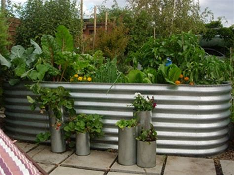 Raised Vegetable Garden Beds Corrugated Iron Corrugated Raised Veggie Bed Home Building
