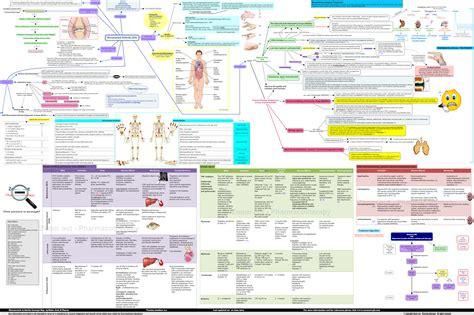 rheumatoid arthritis concept map pathophysiology signs