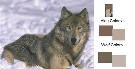 what color are wolves aleu s markings wolf based 169 balto