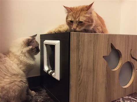 mobile lettiera mobile per lettiera per gatti con intagli athleticat it